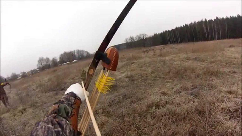 Особенности охоты на бобров