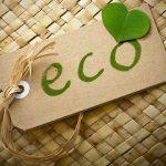 Эко-продукты – продукты для жизни