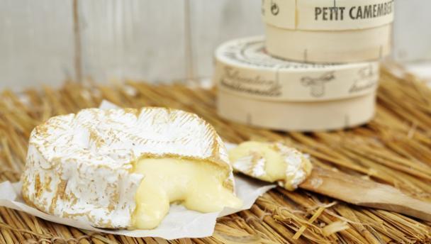 Сырное производство компании MULTIPRO
