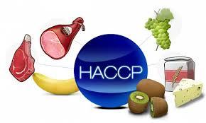 Система ХАССП – контроль над безопасностью продукции