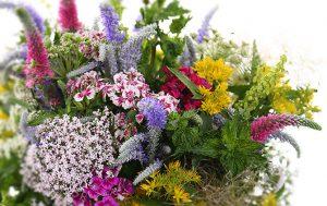 Магазин «Ботаника»: огромный выбор шикарных букетов для любого торжества
