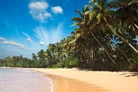 Путешествие на Шри-Ланку: пляжные развлечения