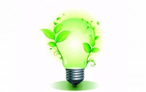 «ОФЛОЭКО»: экологическая деятельность без нарушений и штрафов