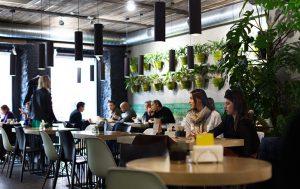 Самые лучшие ресторанчики и кафе Москвы, где можно вкусно и недорого поесть