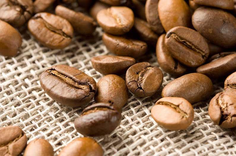 Лучшие сорта для любителей кофе