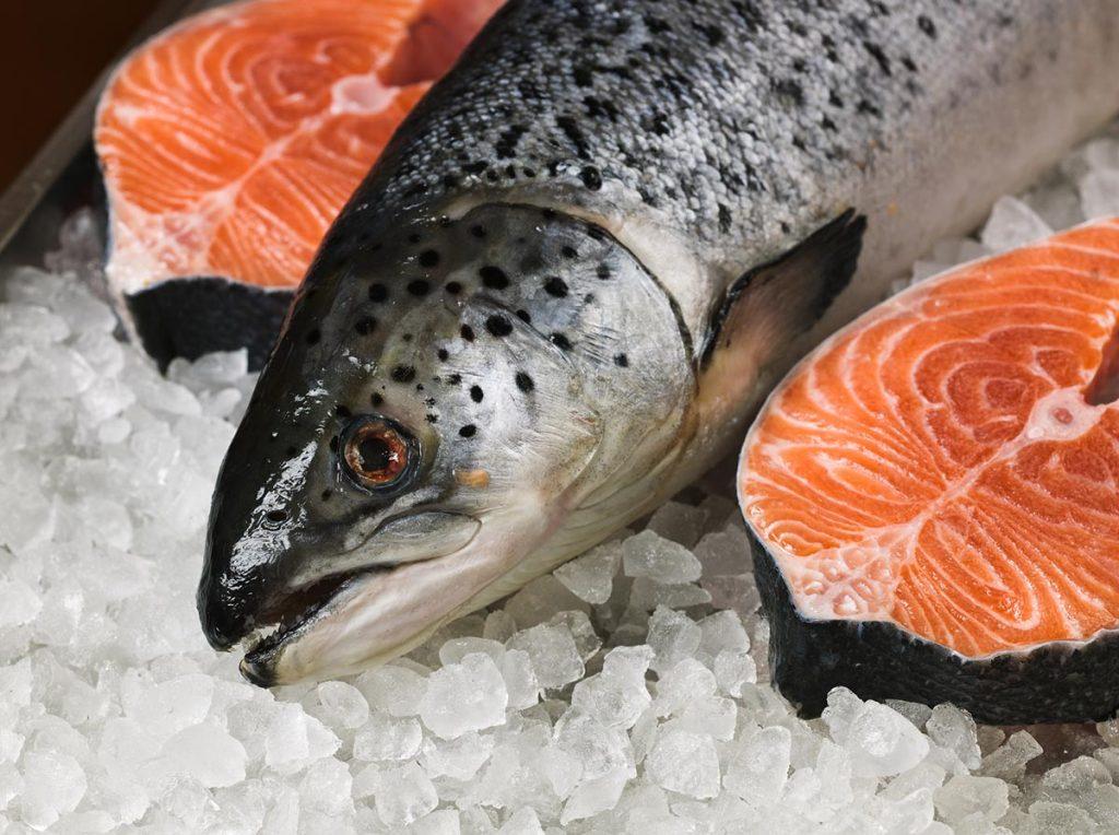 Приобретение дикой рыбы от компании «M2»