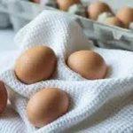 Сколько белка в яйце?
